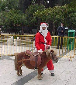 Dear Santa, Please Cancel The Pony